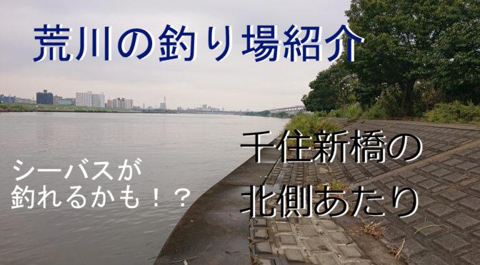 【動画釣り場紹介】荒川千住新橋からやや北のポイント