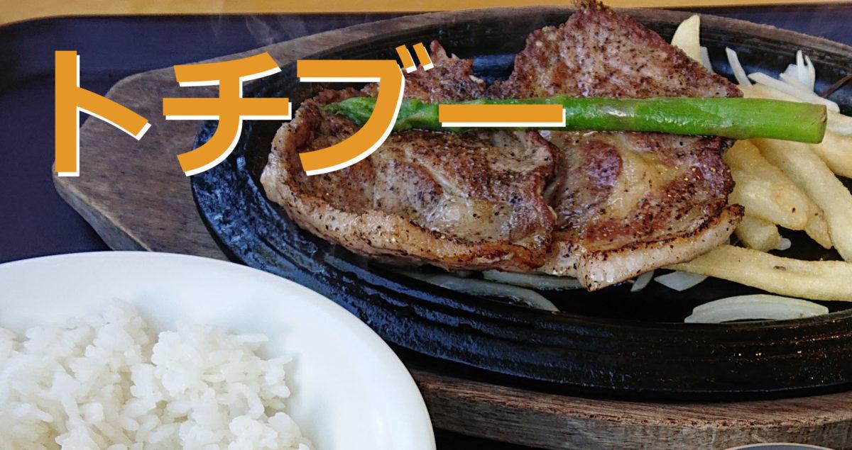 那須どうぶつ王国の「ヤマネコテラス」でトチブーを食べてきました!