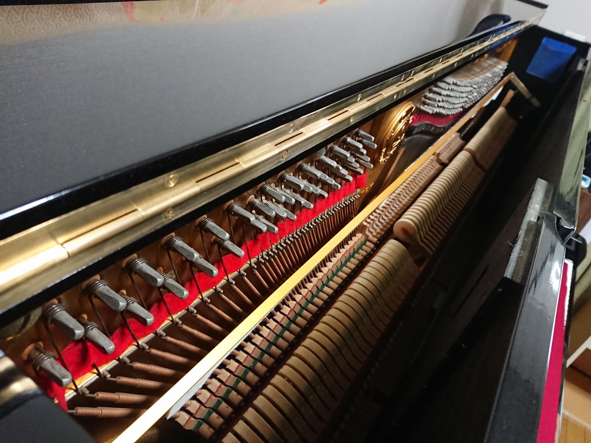 ピアノ調律師の未来は明るいようです